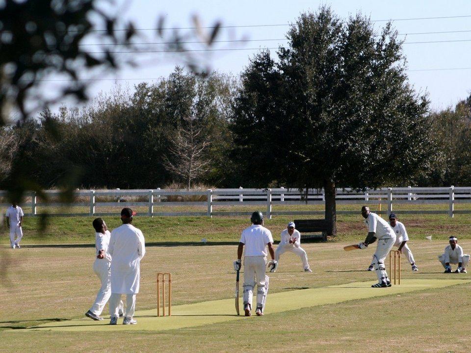 Homepage_Cricket_2